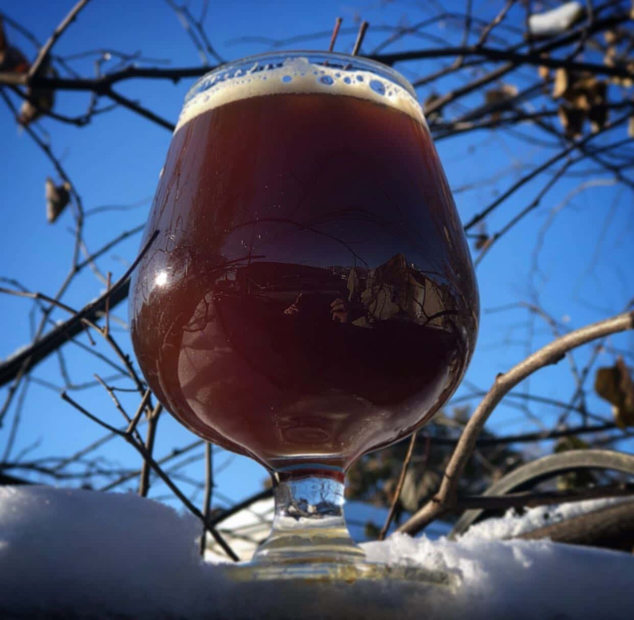 Snifter of Cheval Deux French farmhouse ale from Horse Thief Hollow sitting in the snow against a backdrop of blue sky